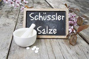 schüssler salze schüßler salze