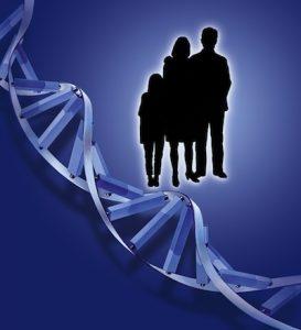 Erbgut, Vererbung, DNA, Gene