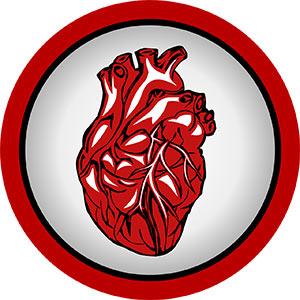 Kardiologe herz