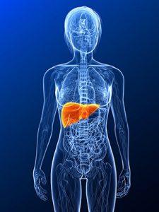 Leberkrebs Symptome Gelbsucht