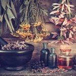 Heilpflanzen & Heilkräuter, Nierenschmerzen, Nervenschmerzen