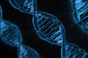 DNA Viren