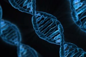 Behandlung Genetik