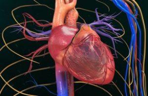 Hausmittel gegen Herzstolpern