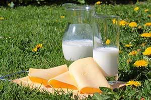 calcium milchprodukte