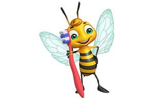 Honig biene zahnpasta