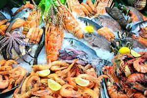 fisch meeresfrüchte lebensmittel kalorien kalorientabelle