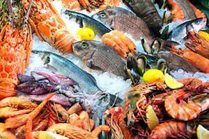 fisch meeresfrüchte Saugwürmer