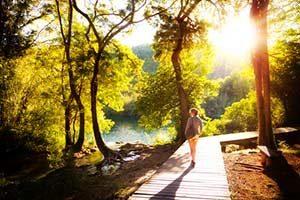 Bewegung Wald Natur Stress Spaziergang