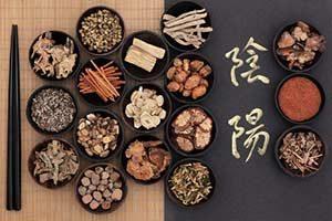 traditionelle chinesische Medizin (TCM) Ernährungstherapie