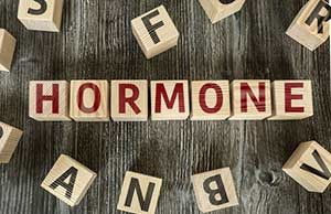 Hormone Endokrinologie Endokrinologe