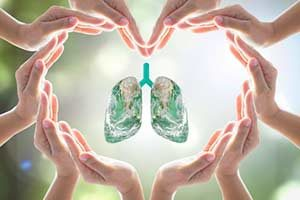 Lunge, Pneumonie, Bronchien,