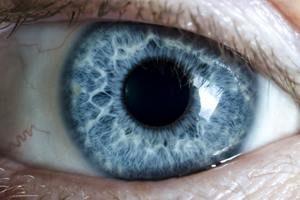 Behandlung Iridologie Augeninnendruck Auge
