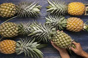 Reifegrade einer Ananas