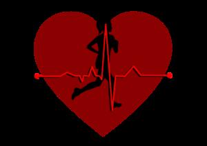 Pulsuhr Herzschlag puls messen