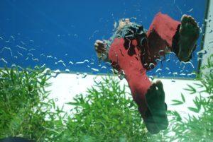 füße glas mensch pflanzen wasser tropfen Loceryl Creme Podo - Orthesiologie