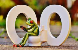 klo toilette stuhlgang pinkeln wasserlassen frosch toilettensitz toilettensitzerhöhung