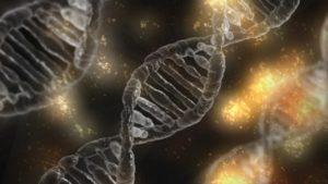 dna gene desoxyribonukleinsäure gen diät, Marfan-Syndrom,