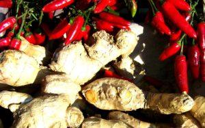 Chili und Ingwer Diät fünf elemente diät