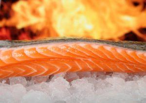 fisch lachs meerestiere eskimo diät omega 3 fettsäuren