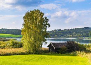 bayern ackerboden see landwirtschaft natur grün himmel baum Elizabethkingia Elisabethkingia