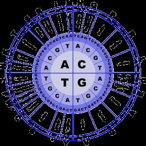 dna , aminosäuren , biologie , code , genetik , molekulare , wissenschaft