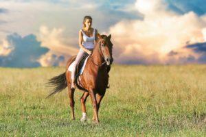 Hippotherapie pferd reiten