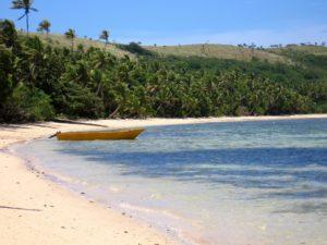 Fiji-Wasser strand boot meer natur wald baum bäume