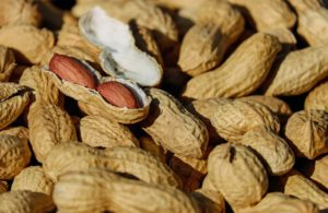 nüsse , erdnuss , geröstet , kerne , snack , knabberei , gesund , lecker , kalorien , herbst
