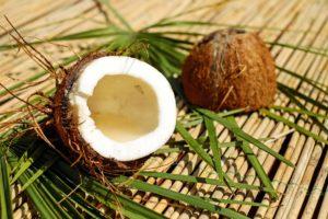 kokosnuss , nuss , schale , braun , fruchtfleisch , exotisch , kokos , Abnehmen mit Kokosöl