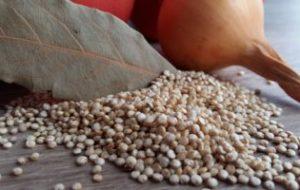 lebensmittel , veganes essen , vegetarische kost , zwiebel , laurel , hintergrund, Quinoa