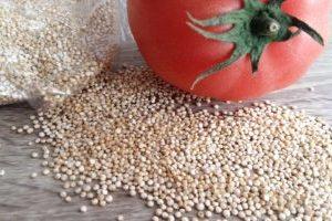 Quinoa Wissenswertes Nährwerte Allergien Zubereitung Krankde