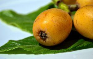 mispel , frucht , gelb , natur , obst , lebensmittel , exotisch , lecker , essen , süß , mediterran , exotische frucht , vitamine , gesund , südeuropa , reifen , klein
