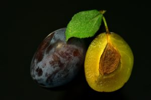 zwetschge , nahaufnahme , aufgeschnitten , frisch , ernte , blau , frucht , nahrung , essen , obst , steinobst , regional , vitamine , lecker , makro