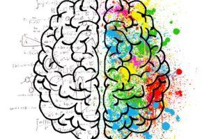 gehirn , geist , psychologie , idee , zeichnung , gespaltene persönlichkeit , gedanken , chaos , zweifel , open mind , graue substanz , unsicherheit , angst , ideen , vergleich , fantasie , kreativität , sinn verschlossen , kopf , konzentration , farbe , mathematik , logik , berechnung