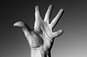 hand , palm , finger , daumen , linien , lebenslinie , gelenke , falten , haut, bänder, sehnen