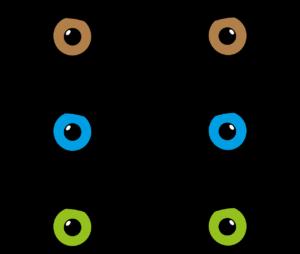 augen , augenfarbe , iris , braun , blau , grün , optik , wimpern , lied , pupille , optiker