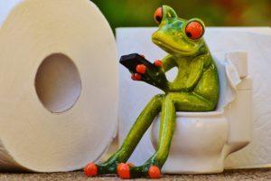 frosch , toilette , klo , sitzung , lustig , toilettenpapier , wc , niedlich , handy , grün , tier, kot, exkremente, urin