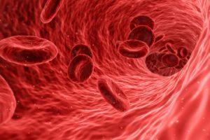 blut , zellen , rot , medizinische , medizin , anatomie , gesundheit , menschliche , biologie , blutzellen , arterie , gesundheitswesen , mikroskopische , ader , pflege , fluss , makro , plasma , kreislauf , mikrobiologie , risiko , pathologie , gefahr , wissenschaft , bakteriologie , mikroorganismus , pathologisch , forschung , analyse , biotechnologie , prüfung , organismus , wissenschaftliche , immunsystem , venen