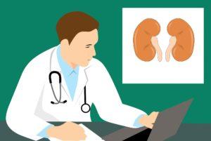 niere , anatomie , biologie , körper , krebs , pflege , chronische , schreibtisch , krankheit , arzt , erklärung , gesundheitswesen , gesund , krankenhaus , entzündung , medizin , orgel , pc , renal , symbol , harn , urin Glomeruläre Filtrationsrate GFR, Nierenentzündung