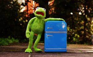kermit , frosch , kühlschrank , lustig , retro , grün , spielzeug , plüschtier , stofftier, essströrung, bulimie, magersucht