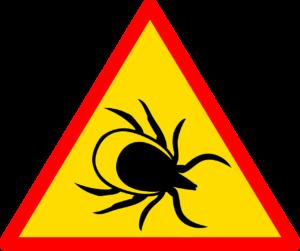 zeichen , straße , verkehrszeichen , verkehr , wegweiser , warnung , markierung , bezeichnung der , kein hintergrund , warnschild , hinweis , tick , arachnid , wurm , die infektion , die krankheit , insekt , gefahr , lyme-borreliose , natur , beißen , erythem , bisse