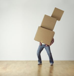 boxen , karton , durchführung , überladen , verschieben , person , belastung , fallen , metapher , usda , bewegen , tragen , paket , nachricht , kein plan , problem ,