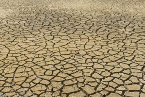 trocken , dehydration , dürre , riss , erde , boden , struktur , textur , wüste , clay , unten , klima , klimawandel, Exsikkose
