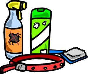flohmarkt, gischt, kragen, pinsel, haustier, tier, hund, käfer, insekt, shampoo, insektenschutz, tick, befreien, pflege, kontrolle, parasiten, eier, larven, aktuell, befall, pestizide, töten