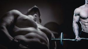 mann , männlich , person , jung , muskeln , bizeps , trizeps , fitnessraum , bodybuilder , bodybuilding , torso , schatten , schwarz und weiß , fitness , tapete