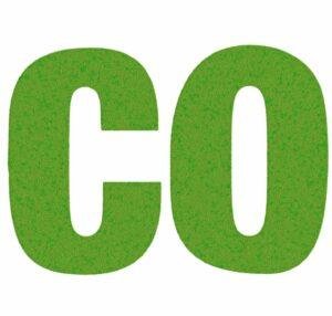 KohlenstoffmonoxidintoxikationKohlenmonoxidintoxikationKohlenstoffmonoxidvergiftung