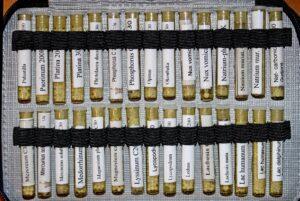 homöopathie , globuli , streukügelchen , röhrchen , hahnemann , heilkunde , heilpraktiker , kügelchen , tierheilpraktiker , alternative therapie , samuel hahnemann , potenzierte drogen , naturheilkunde , alternativmedizin , phytolacca , heilmittel , alternativ , dhu