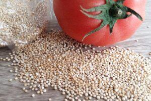 lebensmittel , tomaten , quinoa , veganes essen , vegetarische kost , , Superfood , gesund , andenhirse , korn , saatgut , lebensmittel , gesund , vegetarier , ernährung , vegan , diät , bio , ungekocht , natürliche , zutat , eiweiß , nahrhafte , kochen , braun kochen , braun gesund , braun-diät , braun ernährung ,