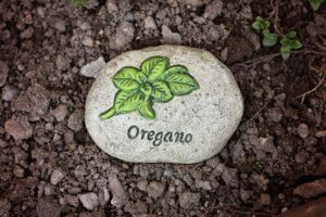oregano , gewürz , heilpflanze, heilkraut, grün , aromatisch , duftend , küchengewürz , kraut , pflanze , getrocknet , zutat , kochen , mediterran , origanum vulgare , heilpflanze , aroma , italienisch ,